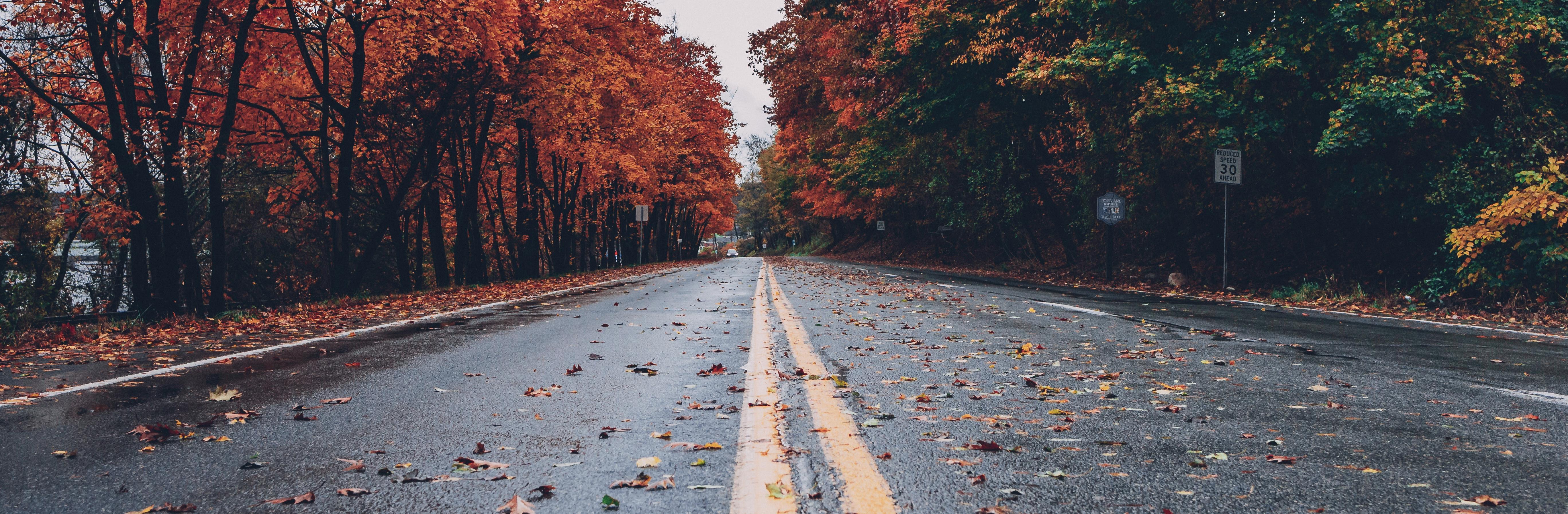 Permalink auf:Den Weg, den du mir vorschreibst, gehe ich, du hast mein Herz dazu bereitgemacht.